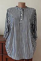 Блуза жіноча подовжена полоска біла