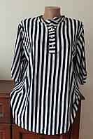 Блуза женская удлиненная полоска белая 2