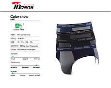Мужские плавки бамбук марка «INDENA» Арт.80201, фото 3