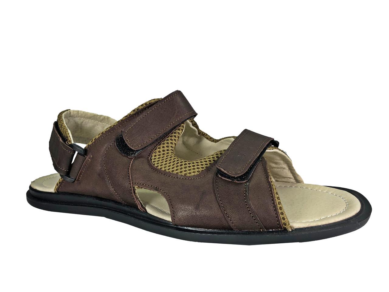 c0aae9956 Мужские летние сандалии больших 46 размеров С-11 кор -  BigBoss-производитель мужской обуви
