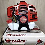 Бензокоса Тайга БГ-4300 мотокоса, фото 2