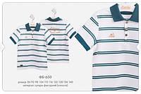 Футболка-поло  для мальчика Premium коллекция Бемби Украина белый ФБ650