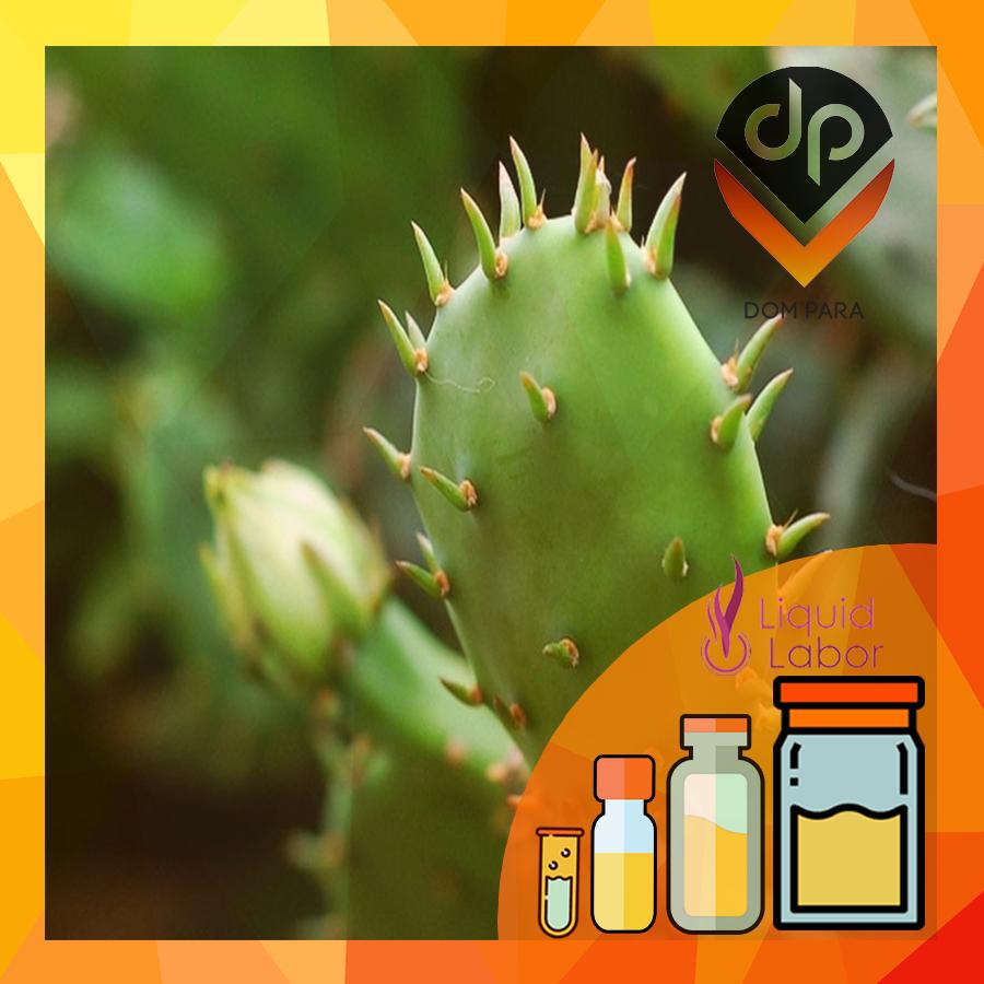Ароматизатор Liquid Labor Mexican Cactus| Мексиканский кактус
