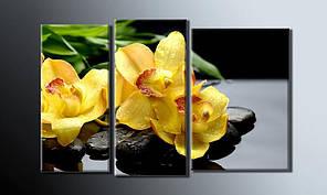 Модульная картина Желтые орхидеи 54х85 см (HAT-014)