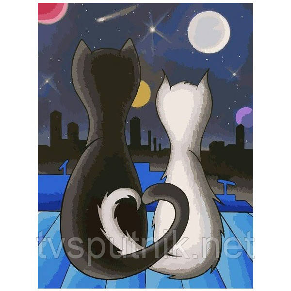 Картина по номерам Белоснежка «Вместе»