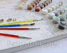 Картина по номерам Белоснежка «Ромашковое утро»30х40 см, фото 2