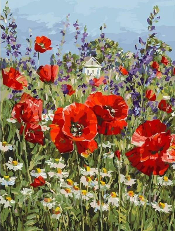Картина по номерам Белоснежка «Краски лета»