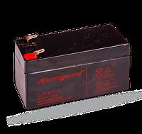 Аккумулятор SA214-1.3
