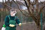 Чем и когда опрыскивать плодовые деревья от болезней и вредителей
