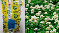 Семена Клевер белый низкорослый Huia (Хайа) 1кг Австралия