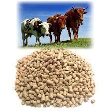 Універсальний рослинний корм для корів телят бичків птиці