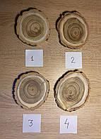 Набор срезовАкации (4 шт), фото 1