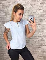 Блуза принт в расцветках  905001Б, фото 3