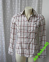 Блузка рубашка женская хлопок бренд PDI Jeans р.44, фото 1