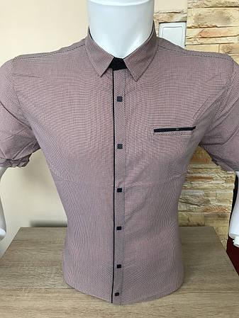 Рубашка в клетку Black Stone с коротким рукавом, фото 2