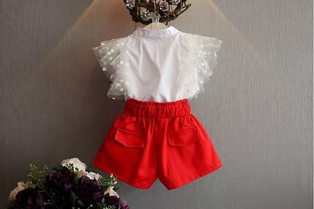 Нарядный летний костюм  на девочку блуза+шорты 2-6 лет бело-красный, фото 2