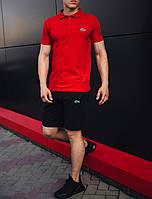 Стильный комплект футболка поло и шорты Lacoste логотип вышит | тенниска