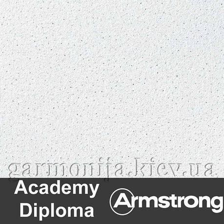 Плита Стельова Academy Diploma Board 600х600х14мм, фото 2