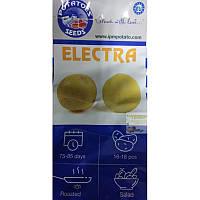 Картопля насіннєва Електра, class E, паперовий мішок 5 кг (ср)