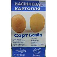 Картопля насіннєва Банба, 1 репродукція, паперовий мішок 5 кг (рс)
