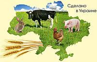 Кормовые добавки для с/х животных