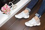 Кроссовки серые с белыми вставками код Т274, фото 6