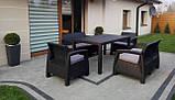 Комплект садових меблів зі штучного ротангу CORFU FIESTA графіт ( Allibert ), фото 7