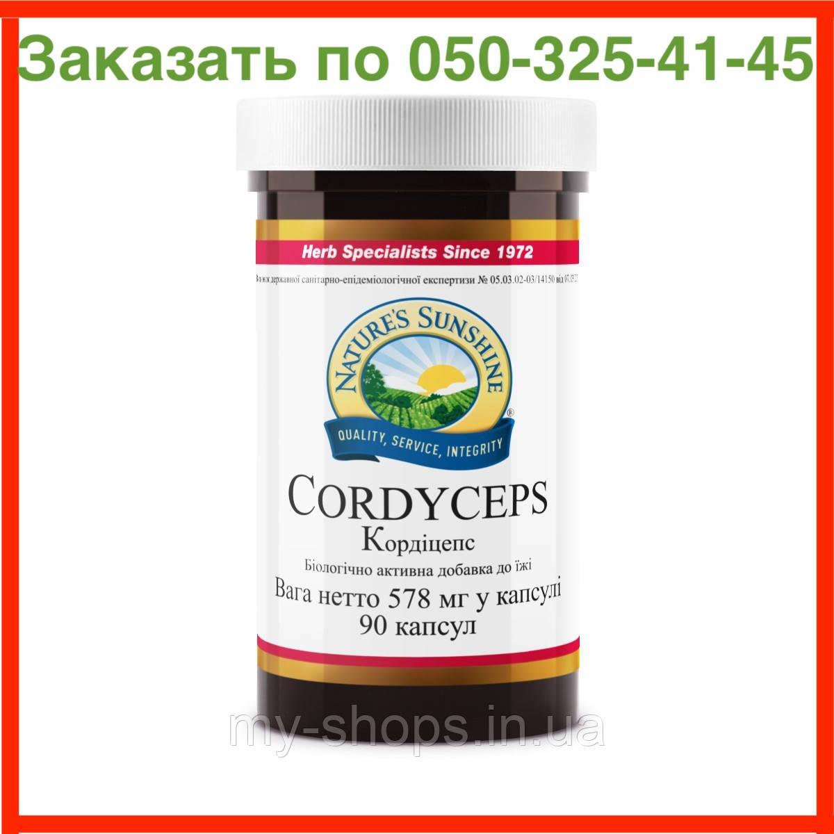 Cordyceps Кордицепс NSP. Натуральная БИОДОБАВКА