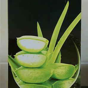Сок Алоэ Вера (Aloe vera juice) 500мл - Sahul, фото 2