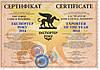 Другие сертификаты, свидетельства и разрешения