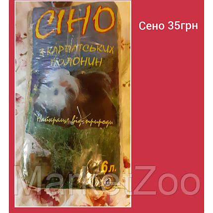 Стартовый пакет для содержания кролика XS, фото 2
