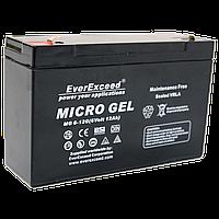 Гелевый аккумулятор EverExceed MG 6-12G