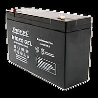 Гелевий акумулятор EverExceed MG 6-12G (Micro Gel 6В 12Ач)