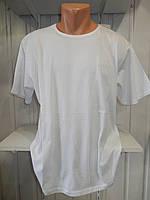 Футболка мужская батал RBS ORIGINAL стрейч коттон  002 \ купить футболку мужскую оптом