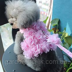 """Мягкая шлейка с поводком  """"Розовый цветок"""" для собаки, кошки. Одежда для  кошек, собак"""