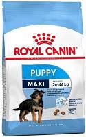 Royal Canin (Роял Канин) Maxi Puppy Корм для щенков крупных пород 4 кг