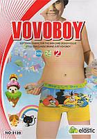 Детские боксеры хлопок Vovoboy, 2-8 лет, 3139