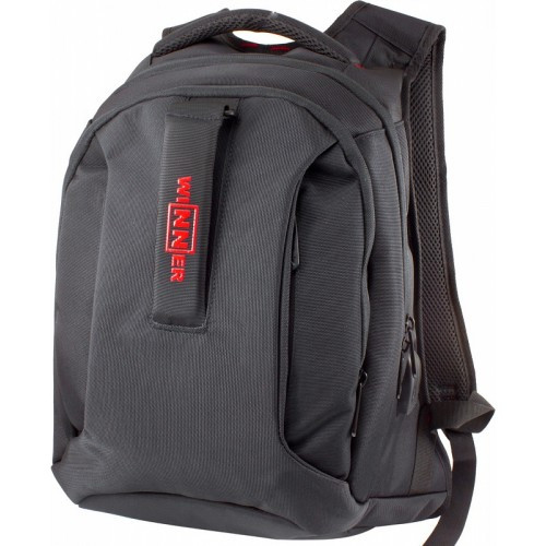 Рюкзак школьный подростковый Winner Stile 399