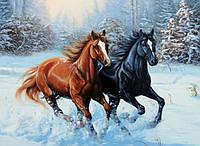 Алмазна мозаїка на підрамнику Швидкі коні у снігу 50 х 40 см (арт. TN441)