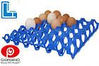 Лоток для яиц, пластиковый лоток для куриных яиц 65-75 г, фото 2