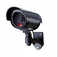 Камери спостереження і Веб-камери