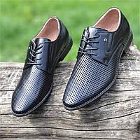 Мужские летние туфли черные кожаные классические на шнурках в дырочку (Код: 1466а), фото 1