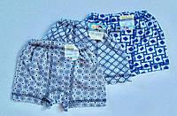 Детские трусики-шортики на мальчика хлопок размер 26-34 (1-7 лет) ассорти РОСТОВКА, фото 1