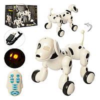 Собака-робот Zoomer на радиоуправлении 619