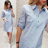 Платье - рубашка арт. 831 белое в голубую полоску