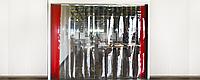 Полосовые пленочные завесы DoorHan FS100 2,8м*2м