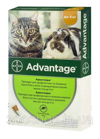 Капли Bayer Advantage от заражений блохами для котов и котят до 4 кг 4 пипетки