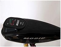 Лодочный электромотор Fisher 250 24V (Фишер 250), фото 3