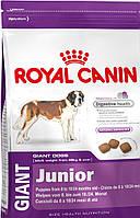 Роял Канин GIANT JUNIOR  корм для щенков собак очень крупных размеров (вес взрослой собаки более 45кг)  15 кг
