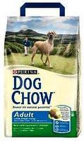Сухой корм для крупных собак Дог Чау Dog Chow Adult Large с индейкой 14 кг